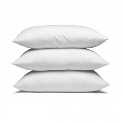 Pillows & Protectors