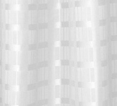 Image of Shower Curtain White Box Stripe