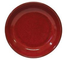 Image of Artistica Pasta/Soup Plate Reactive Red 210mm