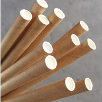 Paper Straw with kraft colour (Carton 2880)